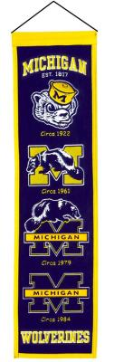 michigan wolverines.JPG