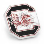 University of South Carolina Lapel Pin1.jpg